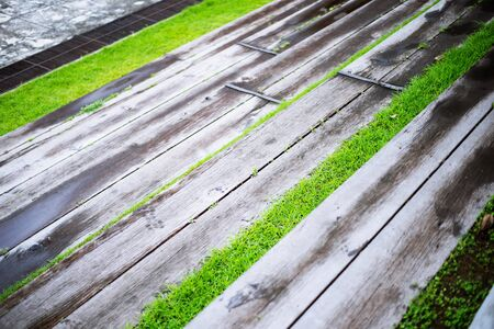Old Concrete and wood Grandstand with grass in the garden open stadium 版權商用圖片