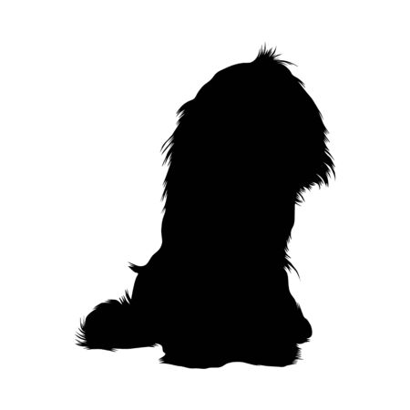 Cavalier King Charles Spaniel, Silhouette Style, Origin Great Britain Illustration
