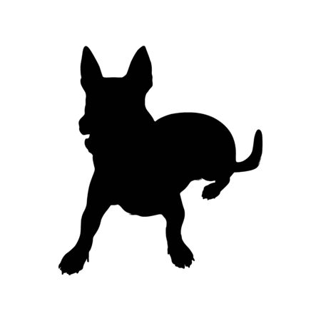 Carolina Dog (American Dingo), Silhouette Style, Found in south and eastern United States