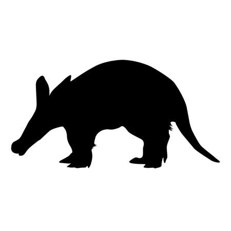 Standing Aardvark Silhouette Isolated On White Found In African Forest