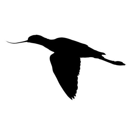Flying Avocet Bird Silhouette Side View Isolated On White Иллюстрация