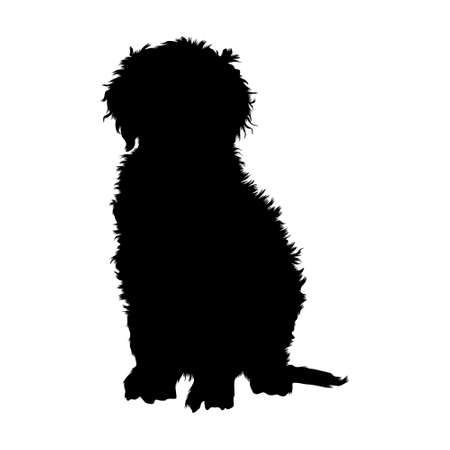 Curly Coated Retriever Silhouette Vector Found In Map Of Europe