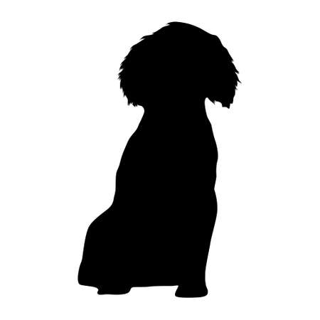 English Springer Spaniel Silhouette Found In Map Of Europ