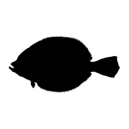 Flounder Fish (Paralichthys) Silhouette Found In Map Of Northern Atlantic and Pacific Oceans