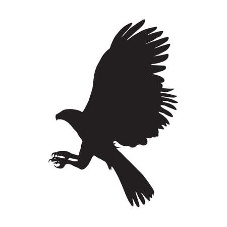 Flying Harpy Eagle (Harpia harpyja), On a Side View, Silhouette, Found In Map Of Western Hemisphere