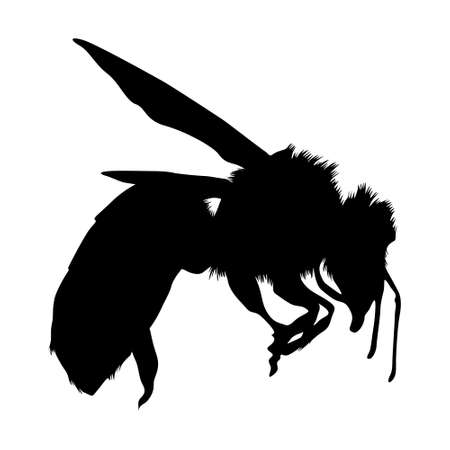 Flying Honey Bee (Apis) On a Side View Silhouette Found In All Around The World. Good To Use For Element Print Book, Animal Book and Animal Content