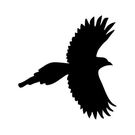 Flying Magpie bird vector on white Illustration