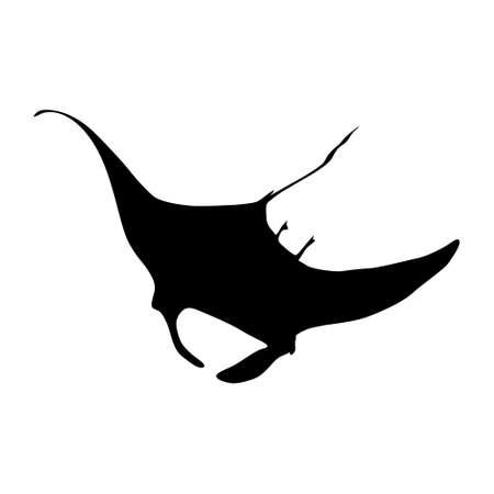 Swimming Manta Ray vector on white