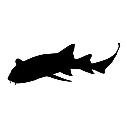 Nurse Shark (Ginglymostoma Cirratum) Swimming On a Side View Silhouette Found In Map Of Africa And America Ocean.