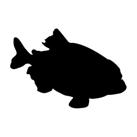 Piranha Fish (Pygocentrus Nattereri) Swimming On a Side View Silhouette Found In Map Of South America. Good To Use For Element Print Book, Animal Book and Animal Content