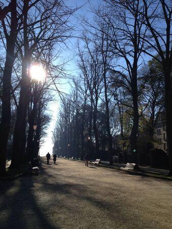 Park in Venice