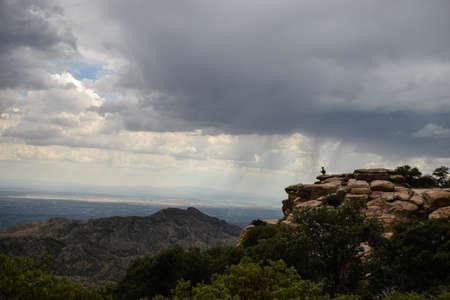 monsoon clouds: Monsoon Rain Falling over Tucson, Arizona
