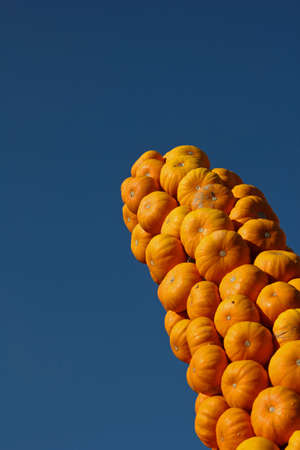 Sculpture of Pumpkins  Howden  pointing upwards Stock Photo - 16688058