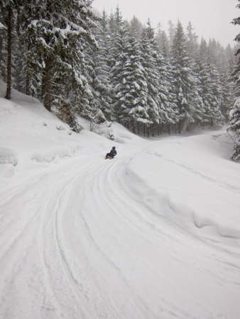 Girl sledding down a forest slope in heavy snow fall Stock Photo