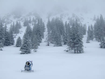 wintersport: Lonely snow cannon on the edge of the misty forest