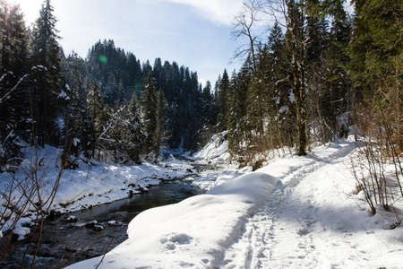 wintersport: Winter scene with snow hiking path and a river through the woods Stock Photo