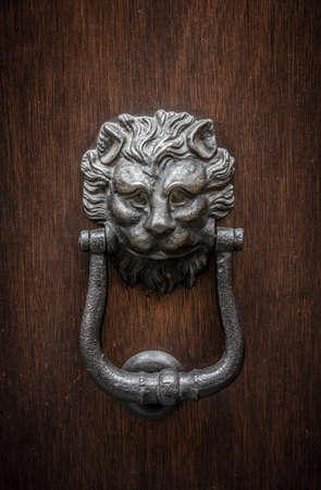 doorknocker: Lion-shaped door knocker on a wooden door in Modena, Emilia-Romagna, Italy