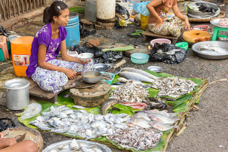 Yangon, Myanmar - November 3, 2013 - Young pretty Asian girl sits on the ground and sells fish on a street market on November 3, 2013 in Yangon  Yangon is the biggest city in Myanmar and its cultural and economical center  The street markets are the main