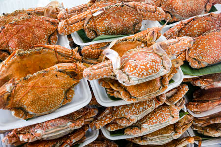Big crabs arranged on styrofoam dishes, ready to be cooked on a Bangkok market Standard-Bild