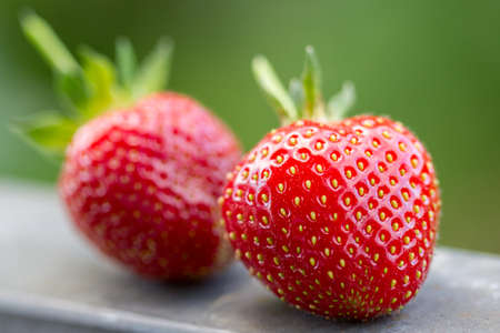 Closeup of two fresh strawberries, one of them intentionally blurred in low depth of field