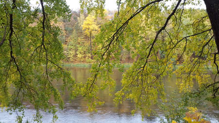 Beautiful view on lake water under green trees branches in early autumn forest.