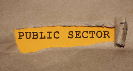 The text Public Sector appearing behind torn brown paper. B2G governmental sector concept.
