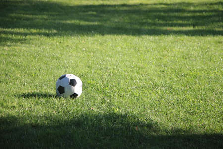 Classic soccer ball, typical black and white pattern, placed on the grass. Traditional football ball on the green grass field of arena.