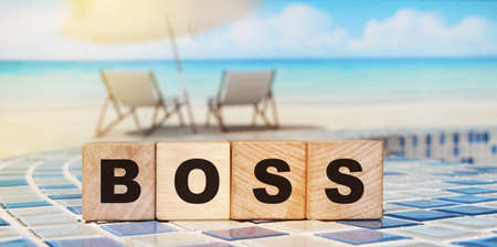 Boss letters on wooden cubes for Chief ExecutiveOfficer on red background. General Director business concept.