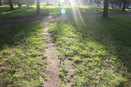 A path under sun rays in an open green field. Way concept.