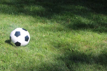 Soccer Ball Sitting On Green Glass Under Cleared Sky Day. Selective Focus on Soccer Ball. Banque d'images