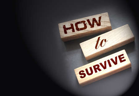 How to Survive words on wooden blocks. Surviving in wild nature concept. Disease and epidemy survival healthcare prevention concept.