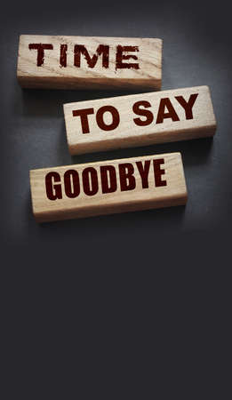 Time to Say Goodbye Message on wooden blocks. Concept Image
