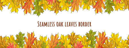 Watercolor oak leaves seamless border. Nice autumn floral illustration isolated on white background for posrcard, banner, autumn festival poster, print design, frame, washi tape, paper adhesive tape