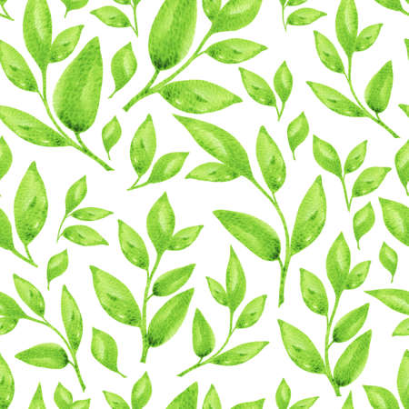 Juicy branches with leaves watercolor seamless pattern. Nice summer floral illustration isolated on white background for textile, wallpaper, fabric, postcard, invitation, cover, wrapping paper