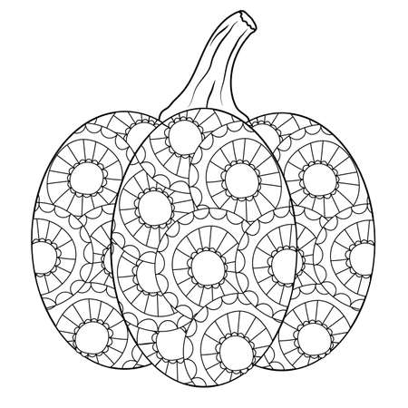 Outlined autumn pumpkin coloring book page in botanical style. Doodle illustration for fun drawing leisure time, being at home. Vector ornated gourd on white isolated background. EPS10