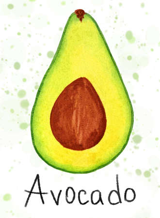 Watercolor half avocado with seed isolated on white background. Ripe fruit cross section on textured spotted backdrop with text for print design, bannet, logo, sticker, poster