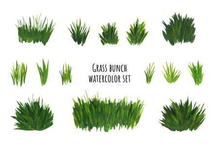 Grass bunch watercolor set. Green sedge stack for scrapbooking design, cartoon scene, sticker. Imagens