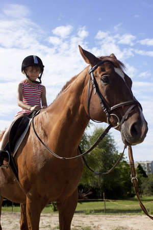 Nice girl and a brown horse photo