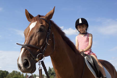 riding horse: Little girl on a big horse Stock Photo
