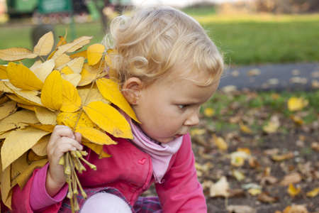 Small girl with yellow leaves in autumn