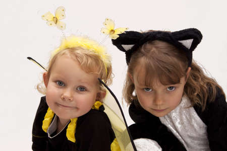Girl dressed as a bee and cat on a white background photo