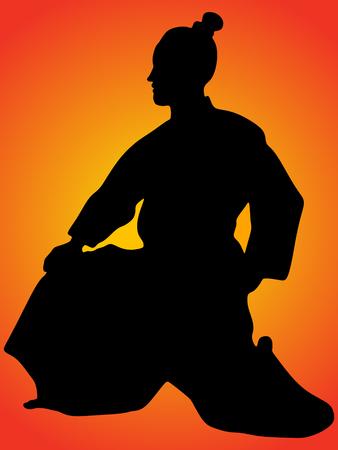 bushido: Aikido fighter