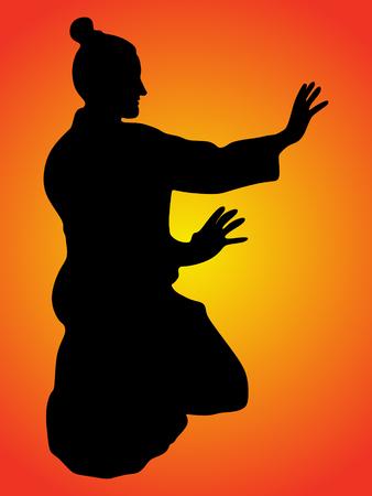 aikido samurai Illustration