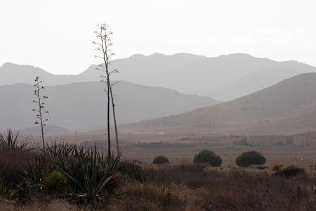 乾燥風景 写真素材