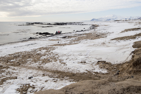 Ytri tunga seal reserve in Iceland Snaefellsnes peninsula