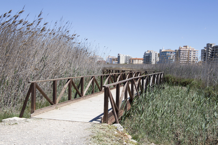 Wetland in Peniscola Castellon province Spain