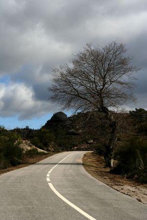 Mountain Road Stock Photo - 516991