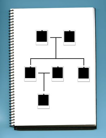 genealoy tree -  album photo
