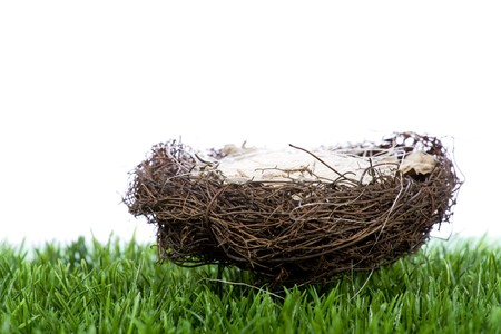straw nest on the green grass Stock Photo