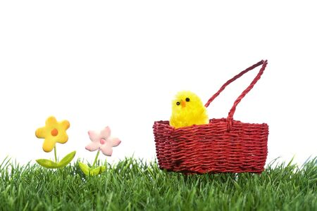 yellow chick inside easter basket on green grass Stock Photo - 4453549
